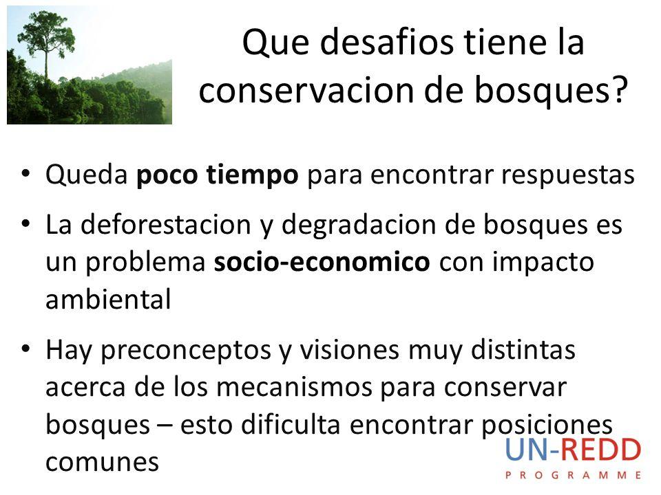 Queda poco tiempo para encontrar respuestas La deforestacion y degradacion de bosques es un problema socio-economico con impacto ambiental Hay preconceptos y visiones muy distintas acerca de los mecanismos para conservar bosques – esto dificulta encontrar posiciones comunes Que desafios tiene la conservacion de bosques?