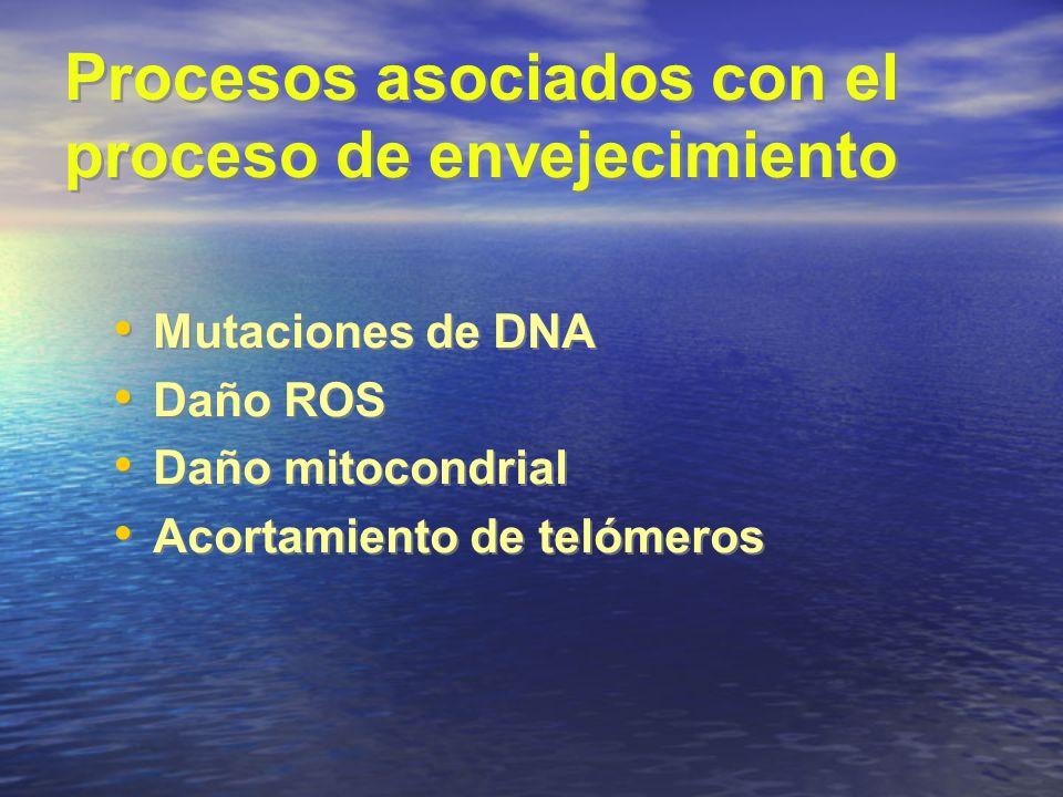 Procesos asociados con el proceso de envejecimiento Mutaciones de DNA Daño ROS Daño mitocondrial Acortamiento de telómeros Mutaciones de DNA Daño ROS