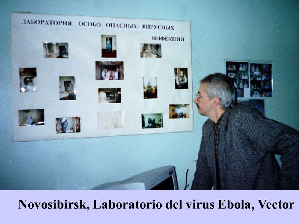 Novosibirsk, Laboratorio del virus Ebola, Vector