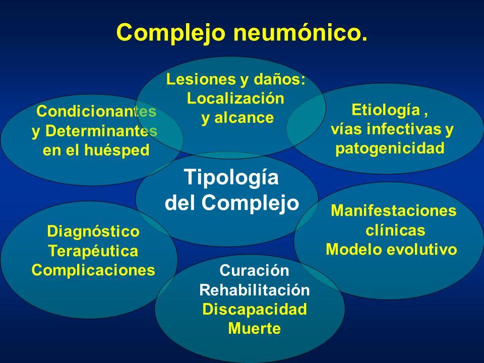 Complejo neumónico. Tipología del Complejo Condicionantes y Determinantes en el huésped Etiología, vías infectivas y patogenicidad Lesiones y daños: L