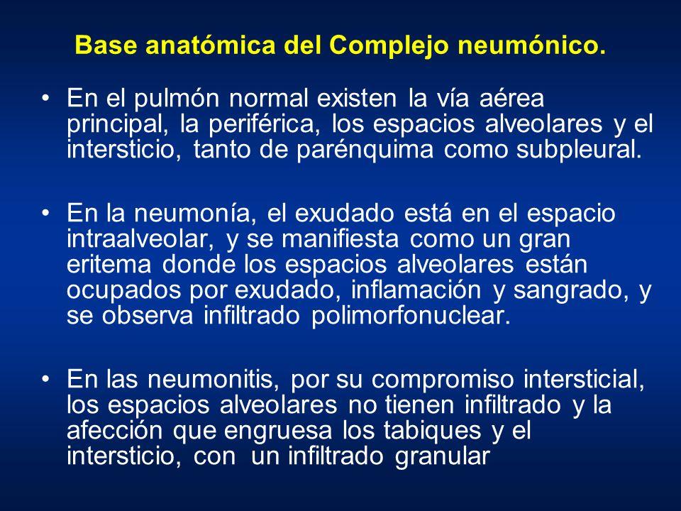 Base anatómica del Complejo neumónico. En el pulmón normal existen la vía aérea principal, la periférica, los espacios alveolares y el intersticio, ta