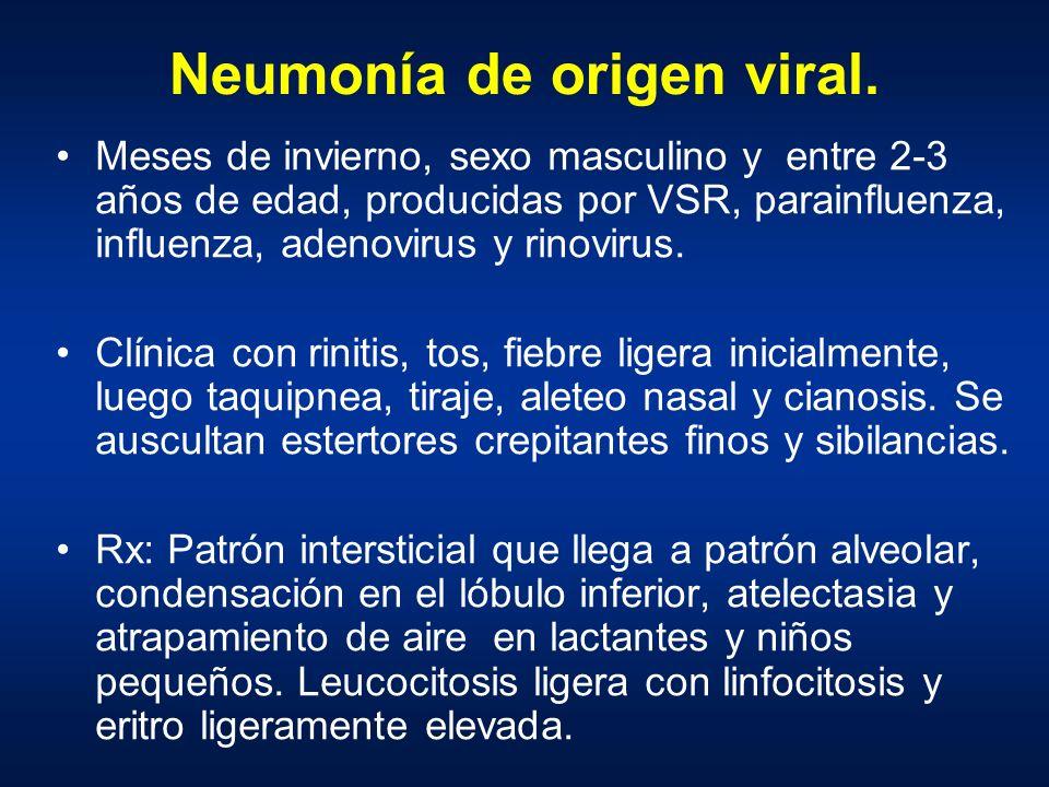 Neumonía de origen viral. Meses de invierno, sexo masculino y entre 2-3 años de edad, producidas por VSR, parainfluenza, influenza, adenovirus y rinov