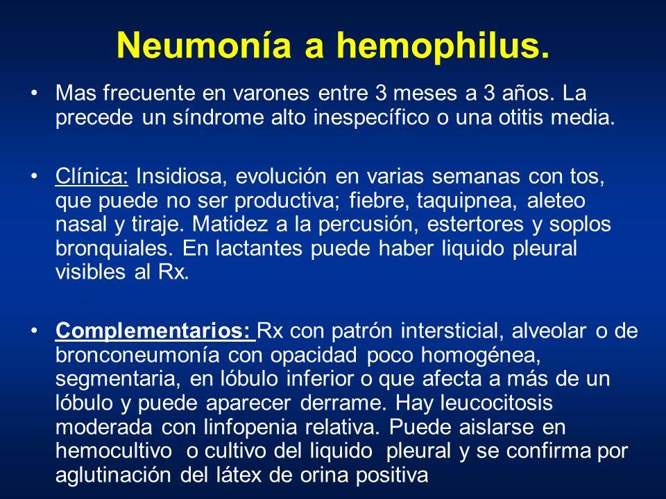 Neumonía a hemophilus. Mas frecuente en varones entre 3 meses a 3 años. La precede un síndrome alto inespecífico o una otitis media. Clínica: Insidios