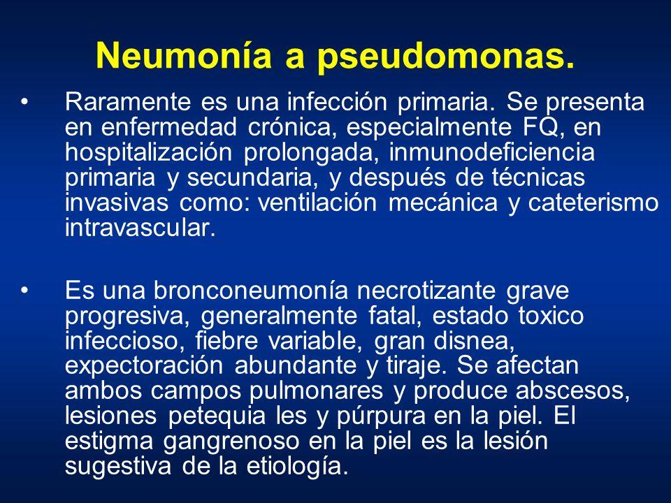 Neumonía a pseudomonas. Raramente es una infección primaria. Se presenta en enfermedad crónica, especialmente FQ, en hospitalización prolongada, inmun