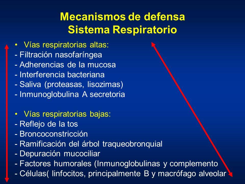 Mecanismos de defensa Sistema Respiratorio Vías respiratorias altas: - Filtración nasofaríngea - Adherencias de la mucosa - Interferencia bacteriana -