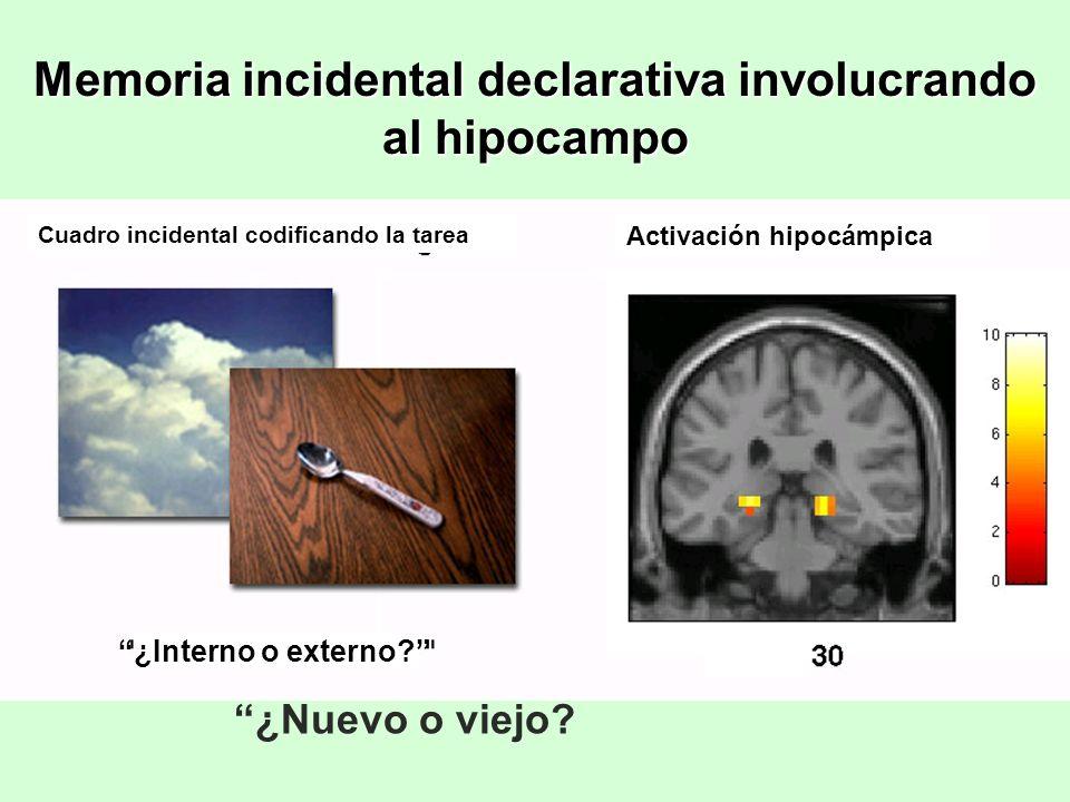 Memoria incidental declarativa involucrando al hipocampo ¿Nuevo o viejo? ¿Interno o externo? Activación hipocámpica Cuadro incidental codificando la t