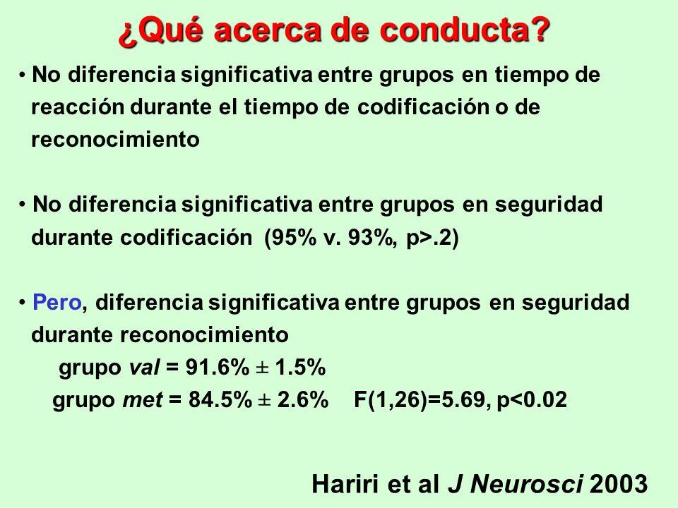 ¿Qué acerca de conducta? No diferencia significativa entre grupos en tiempo de reacción durante el tiempo de codificación o de reconocimiento No difer