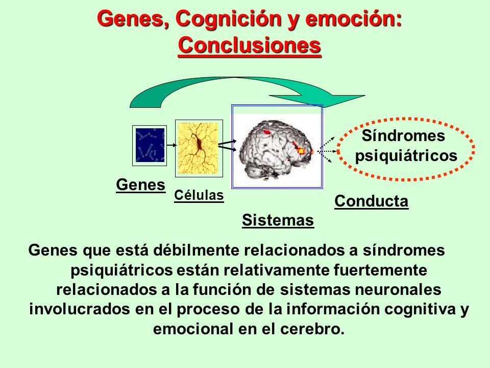 Genes, Cognición y emoción: Conclusiones Genes que está débilmente relacionados a síndromes psiquiátricos están relativamente fuertemente relacionados
