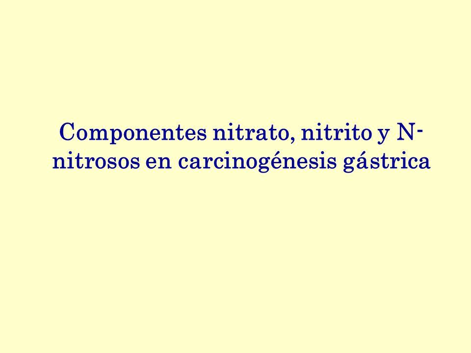 Componentes nitrato, nitrito y N- nitrosos en carcinogénesis gástrica