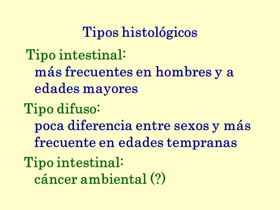 Tipos histológicos Tipo intestinal: más frecuentes en hombres y a edades mayores Tipo difuso: poca diferencia entre sexos y más frecuente en edades te