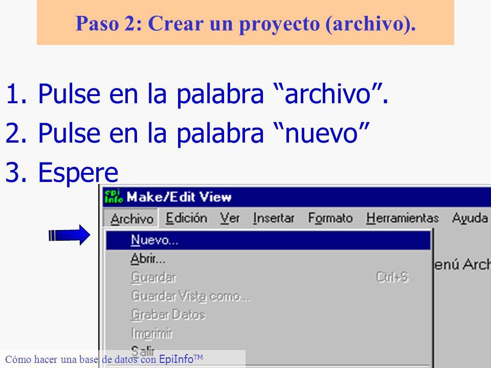 8 Paso 2: Crear un proyecto (archivo). 1.Pulse en la palabra archivo. 2.Pulse en la palabra nuevo 3.Espere Cómo hacer una base de datos con EpiInfo TM