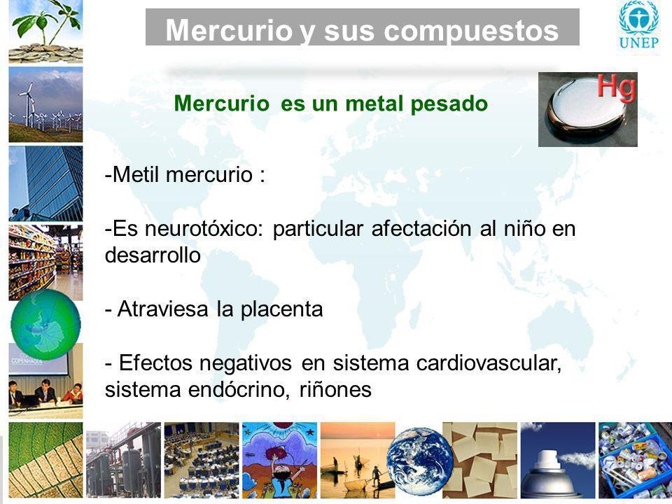 Mercurio Mercurio y sus compuestos ENFERMEDAD DE MINAMATA Síndrome neurológico grave y permanente: entumecimiento en las manos y los pies, debilidad del músculo, daños en campo visual, discurso y auditivo.