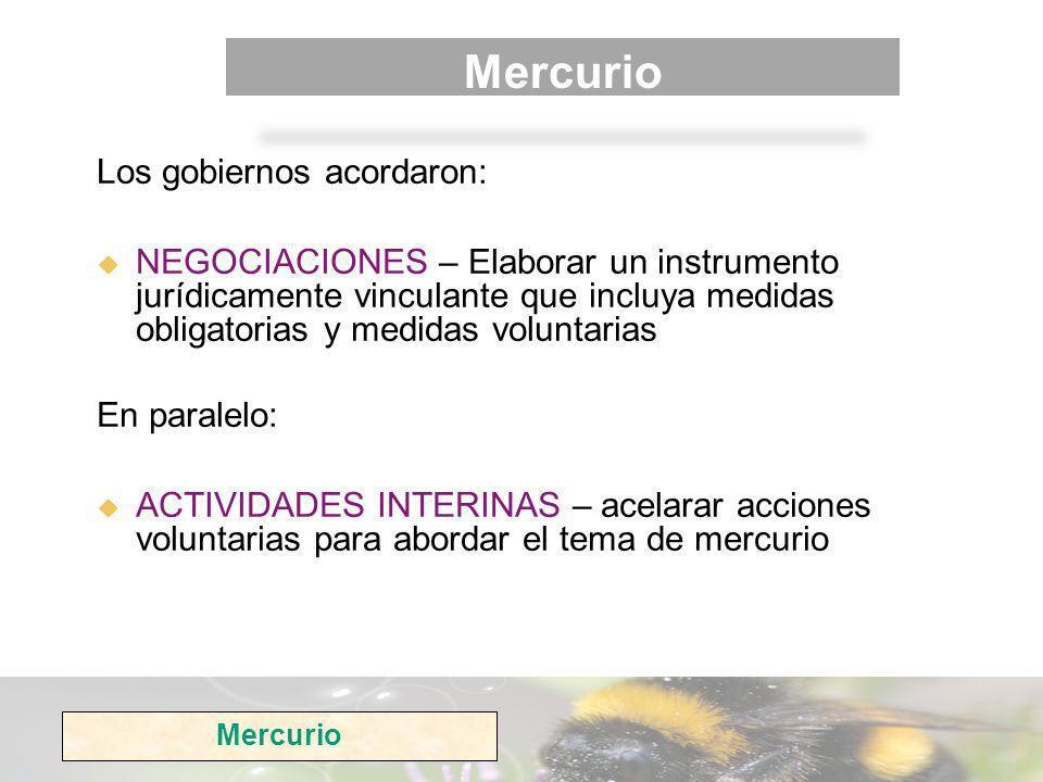 Mercurio Los gobiernos acordaron: NEGOCIACIONES – Elaborar un instrumento jurídicamente vinculante que incluya medidas obligatorias y medidas voluntarias En paralelo: ACTIVIDADES INTERINAS – acelarar acciones voluntarias para abordar el tema de mercurio