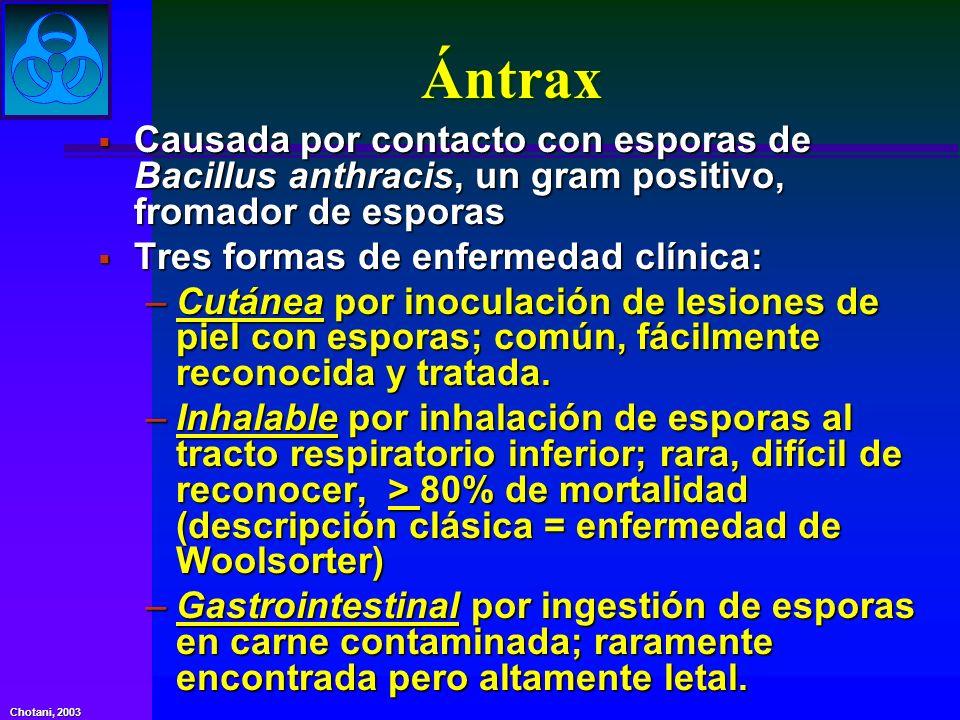 Ántrax Causada por contacto con esporas de Bacillus anthracis, un gram positivo, fromador de esporas Causada por contacto con esporas de Bacillus anth