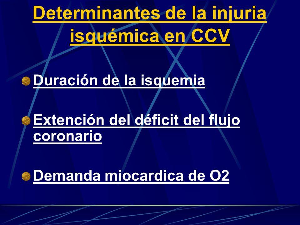 Determinantes de la injuria isquémica en CCV Duración de la isquemia Extención del déficit del flujo coronario Demanda miocardica de O2