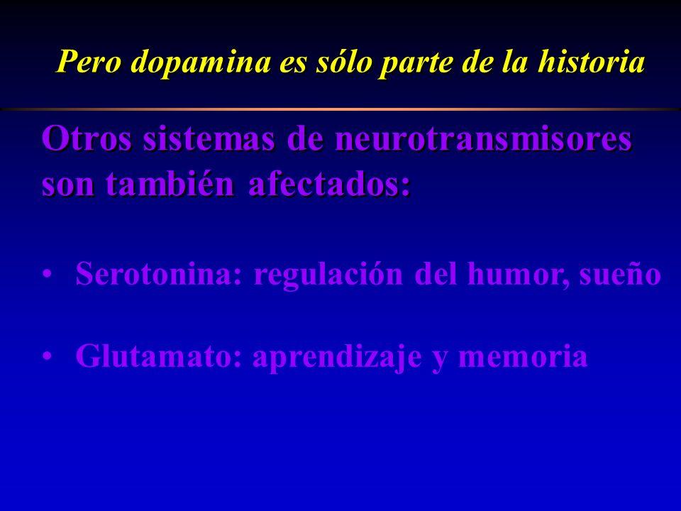 Otros sistemas de neurotransmisores son también afectados: Pero dopamina es sólo parte de la historia Serotonina: regulación del humor, sueño Glutamat