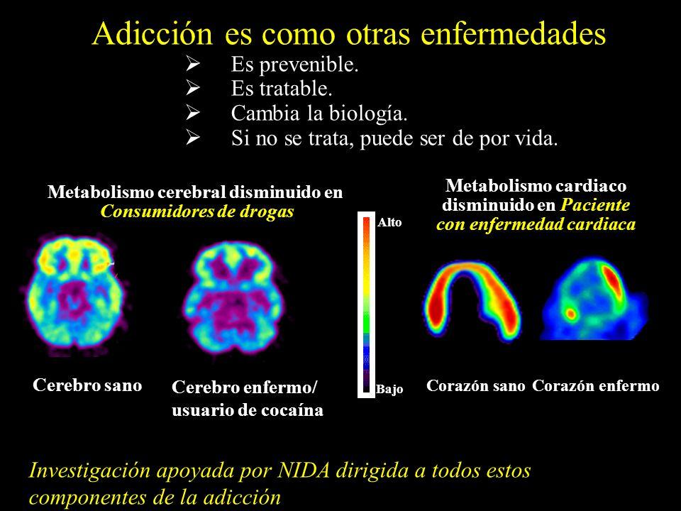 Corazón sano Corazón enfermo Metabolismo cardiaco disminuido en Paciente con enfermedad cardiaca Cerebro enfermo/ usuario de cocaína Alto Bajo Adicció