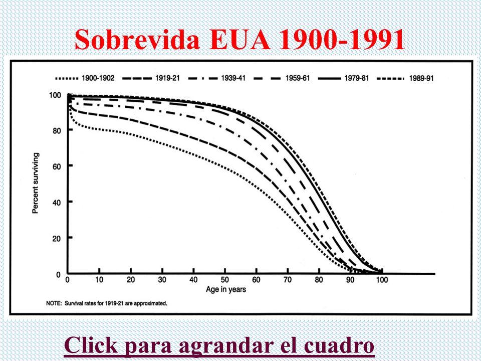 Principales causas de muerte EUA 1900 1Tuberculosis 2Neumonía e influenza 3Enfermedad cardiaca 4Diarrea 5Embolia 6Enfermedad del riñón 7Accidentes 8Cáncer 9Senilidad Bronquitis