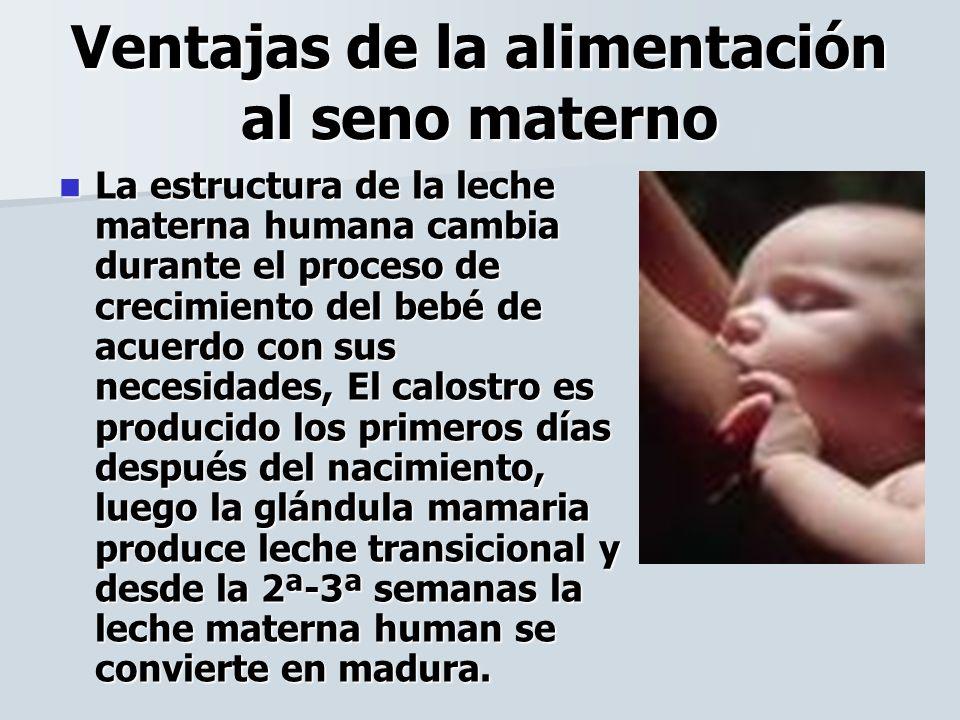 Ventajas de la alimentación al seno materno La estructura de la leche materna humana cambia durante el proceso de crecimiento del bebé de acuerdo con