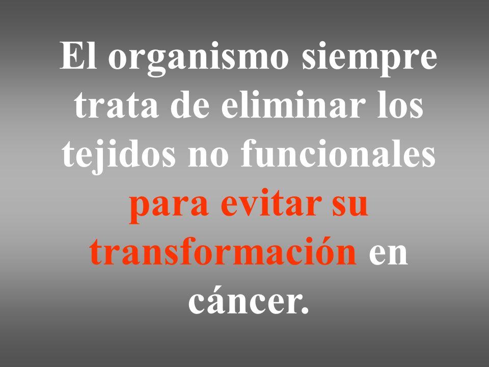 El organismo siempre trata de eliminar los tejidos no funcionales para evitar su transformación en cáncer.