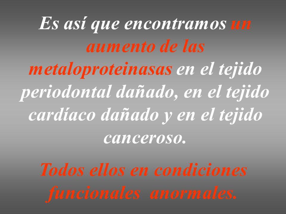 Es así que encontramos un aumento de las metaloproteinasas en el tejido periodontal dañado, en el tejido cardíaco dañado y en el tejido canceroso. Tod