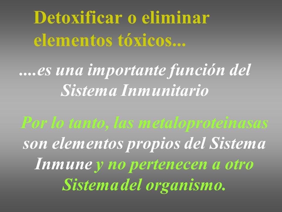 ....es una importante función del Sistema Inmunitario Por lo tanto, las metaloproteinasas son elementos propios del Sistema Inmune y no pertenecen a o
