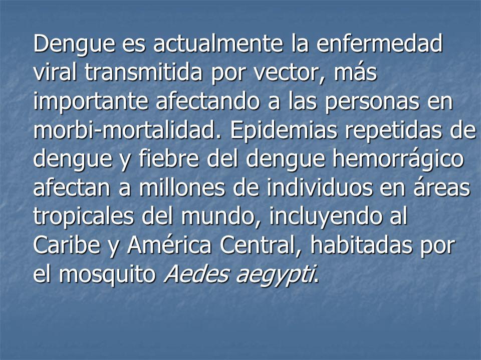 Dengue es actualmente la enfermedad viral transmitida por vector, más importante afectando a las personas en morbi-mortalidad. Epidemias repetidas de