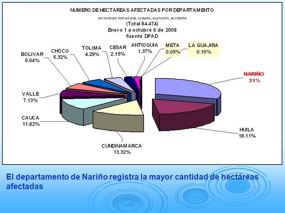 El departamento de Nariño registra la mayor cantidad de hectáreas afectadas