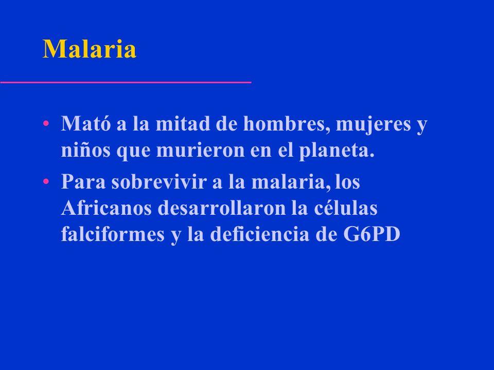 Malaria Mató a la mitad de hombres, mujeres y niños que murieron en el planeta. Para sobrevivir a la malaria, los Africanos desarrollaron la células f