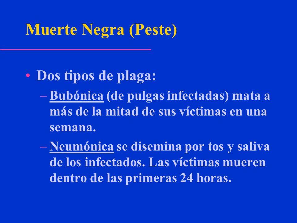 Muerte Negra (Peste) Dos tipos de plaga: –Bubónica (de pulgas infectadas) mata a más de la mitad de sus víctimas en una semana. –Neumónica se disemina