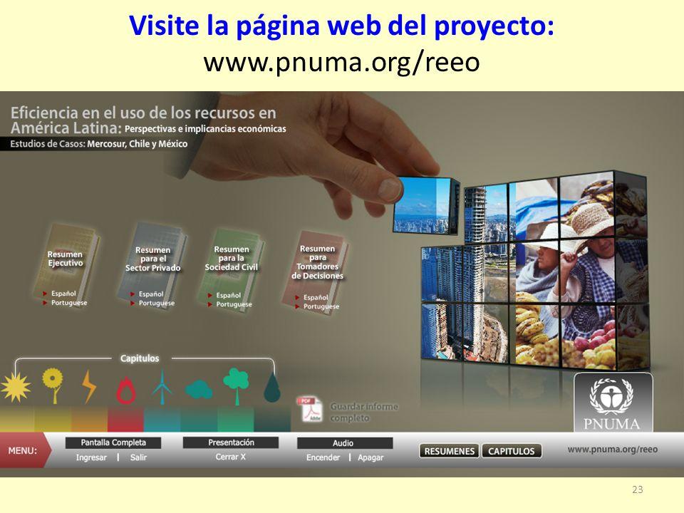 23 Visite la página web del proyecto: www.pnuma.org/reeo