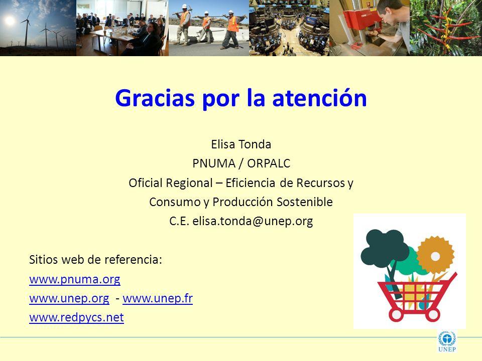 Gracias por la atención Elisa Tonda PNUMA / ORPALC Oficial Regional – Eficiencia de Recursos y Consumo y Producción Sostenible C.E. elisa.tonda@unep.o