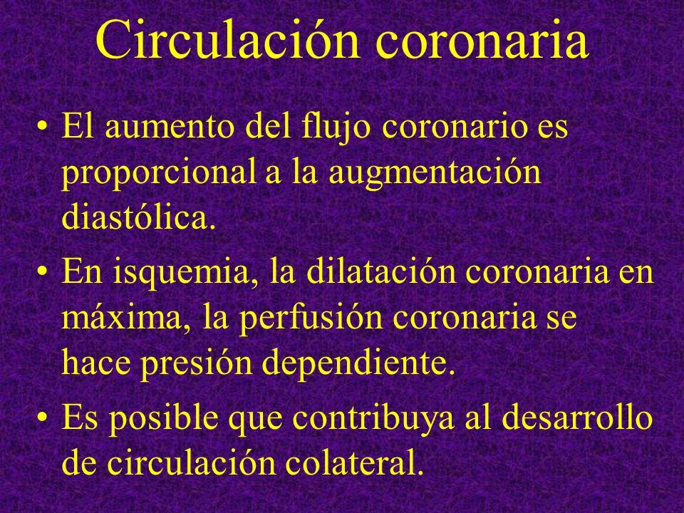 Circulación coronaria El aumento del flujo coronario es proporcional a la augmentación diastólica. En isquemia, la dilatación coronaria en máxima, la