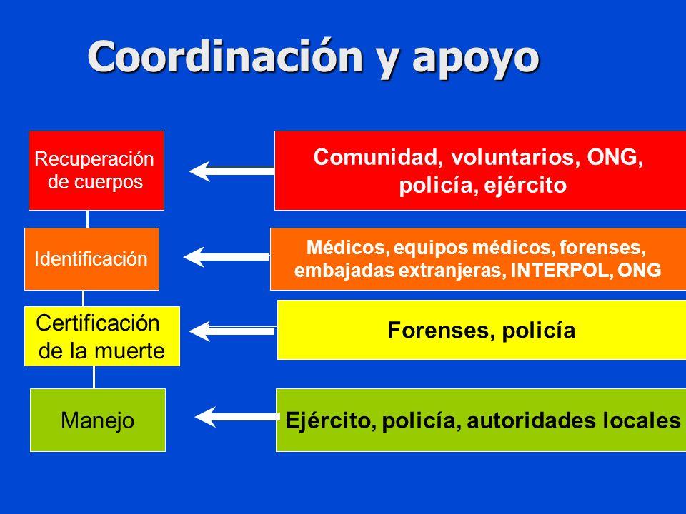 Coordinación y apoyo Recuperación de cuerpos Comunidad, voluntarios, ONG, policía, ejército Identificación Médicos, equipos médicos, forenses, embajadas extranjeras, INTERPOL, ONG Certificación de la muerte Forenses, policía ManejoEjército, policía, autoridades locales