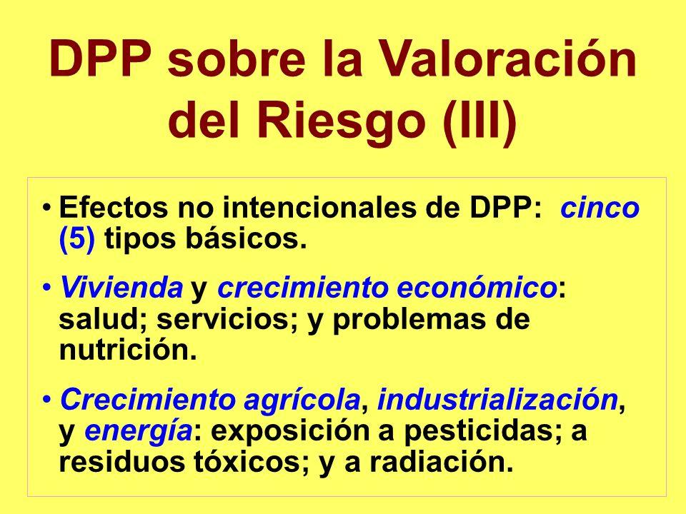 DPP sobre la Valoración del Riesgo (III) Efectos no intencionales de DPP: cinco (5) tipos básicos. Vivienda y crecimiento económico: salud; servicios;