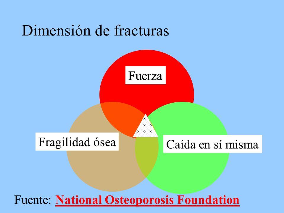 Dimensión de fracturas Caída en sí misma Fragilidad ósea Fuerza Fuente: National Osteoporosis FoundationNational Osteoporosis Foundation