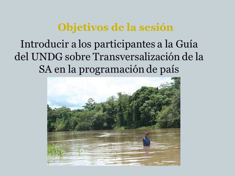 Objetivos de la sesión Introducir a los participantes a la Guía del UNDG sobre Transversalización de la SA en la programación de país