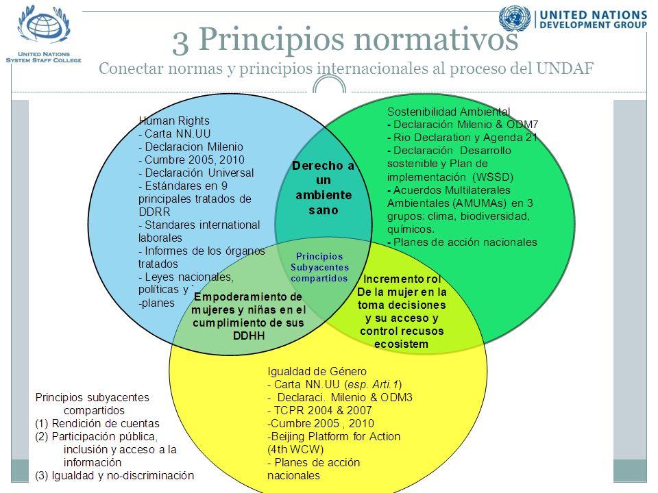 3 Principios normativos Conectar normas y principios internacionales al proceso del UNDAF