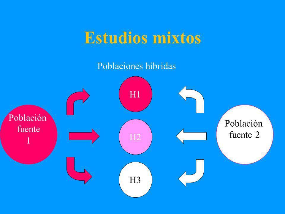 Estudios mixtos Poblaciones híbridas Población fuente 1 H1 H2 H3 Población fuente 2