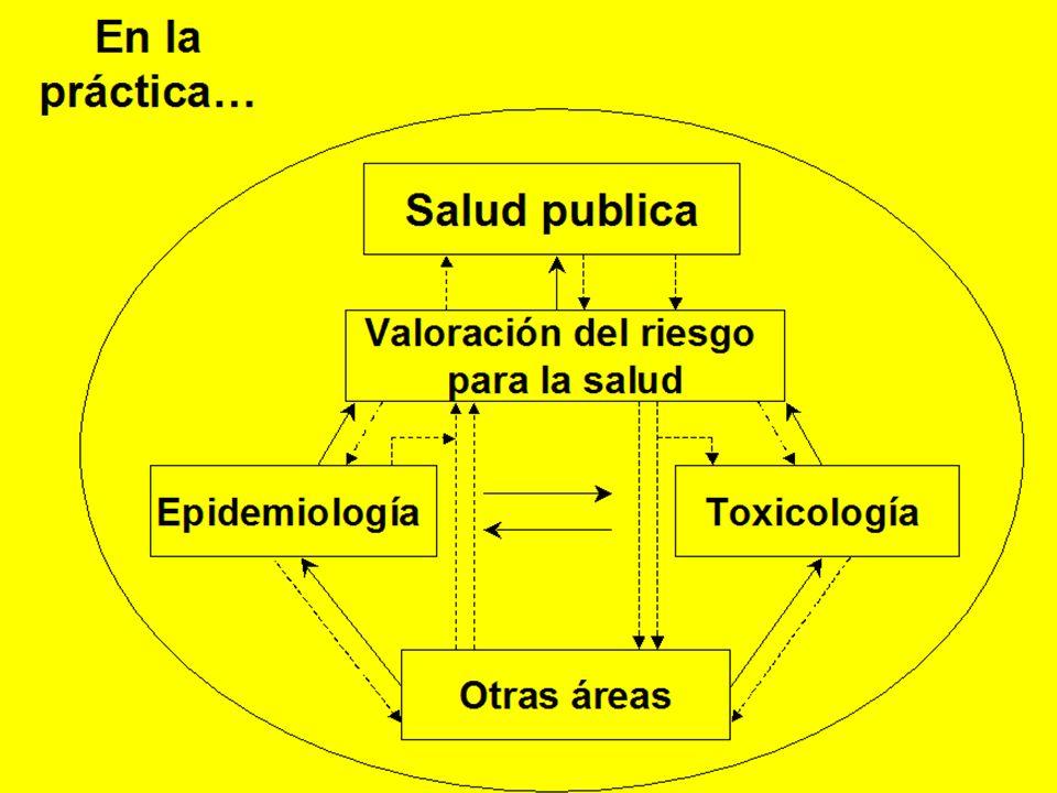 La hibridación de la epidemiología y la toxicología: como una sub - disciplina No tanto aquí de manera apreciable.