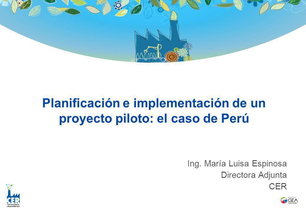 Planificación e implementación de un proyecto piloto: el caso de Perú Ing. María Luisa Espinosa Directora Adjunta CER