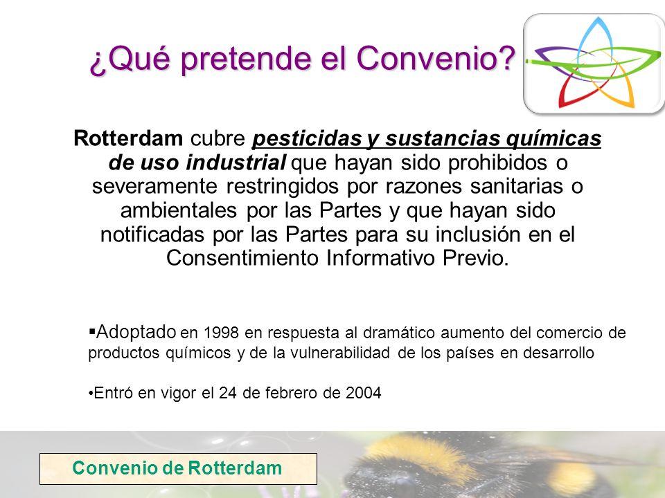 Convenio de Rotterdam ¿Qué pretende el Convenio? Rotterdam cubre pesticidas y sustancias químicas de uso industrial que hayan sido prohibidos o severa
