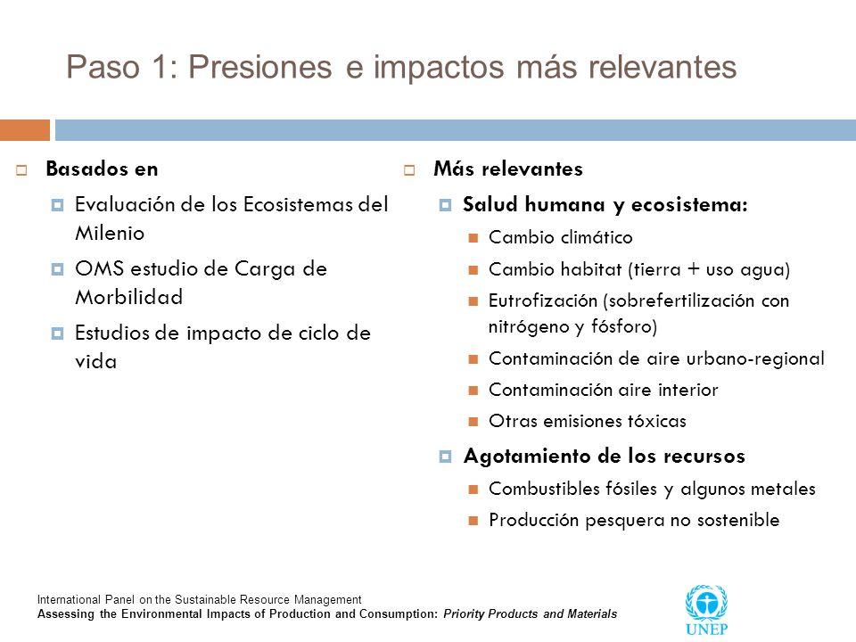 Paso 1: Presiones e impactos más relevantes Basados en Evaluación de los Ecosistemas del Milenio OMS estudio de Carga de Morbilidad Estudios de impact