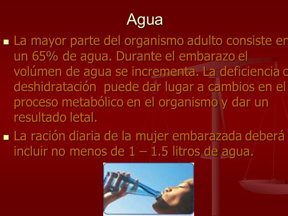 Agua La mayor parte del organismo adulto consiste en un 65% de agua. Durante el embarazo el volúmen de agua se incrementa. La deficiencia o deshidrata