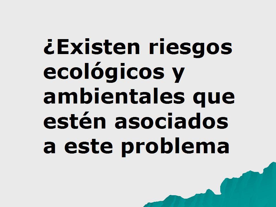 ¿Existen riesgos ecológicos y ambientales que estén asociados a este problema?