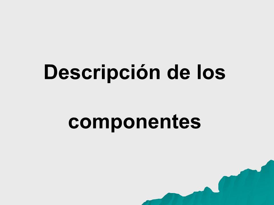 BIBLIOGRAFIA CONSULTADA Borroto, R., Liz, M.Diagnóstico comunitario de la situación de salud.