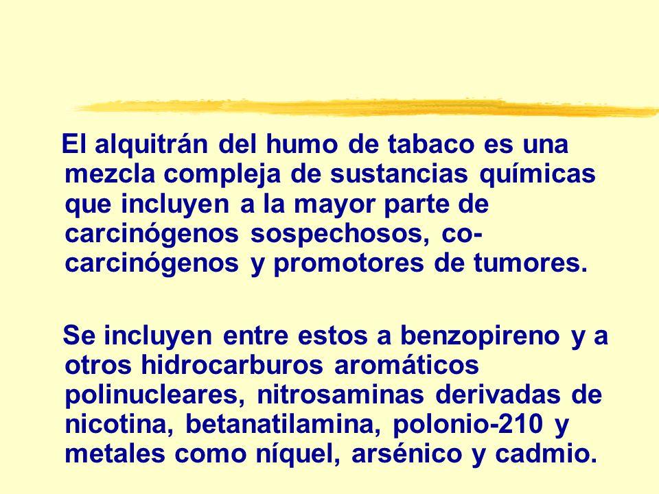 Se considera que el tabaquismo es responsable del 30 % de todos los casos de cáncer 1.80 al 90 % de canceres pulmonares, 2.75 % de bucales, laringeos y esofágicos, 3.30 a 40 % de canceres de vejiga y renales 4.15 a 30 % de leucemia y casos de mieloma