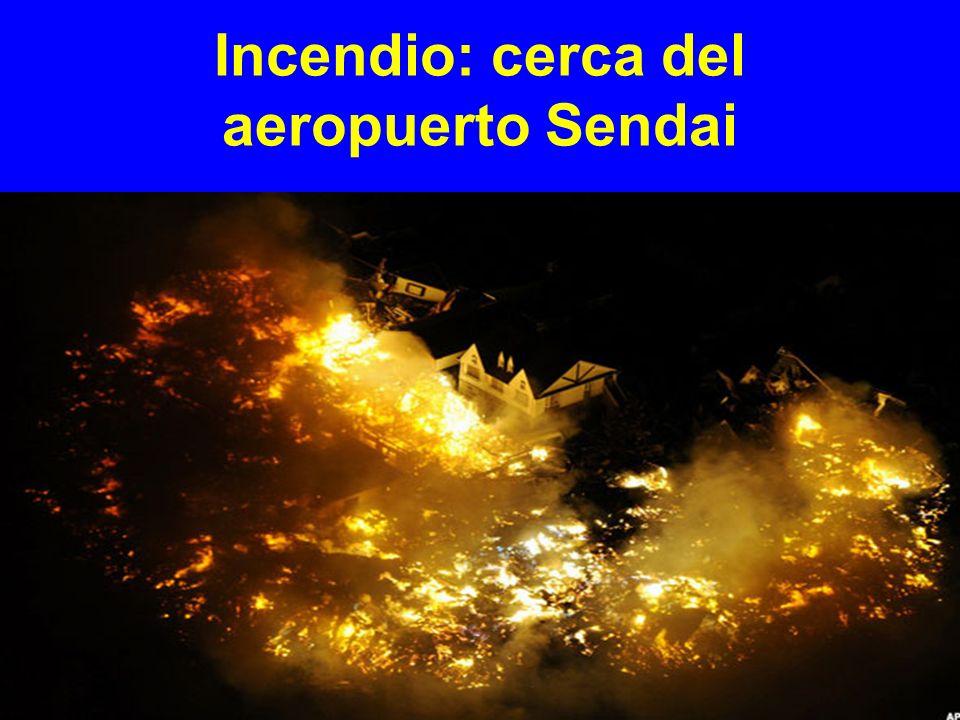 Incendio: cerca del aeropuerto Sendai