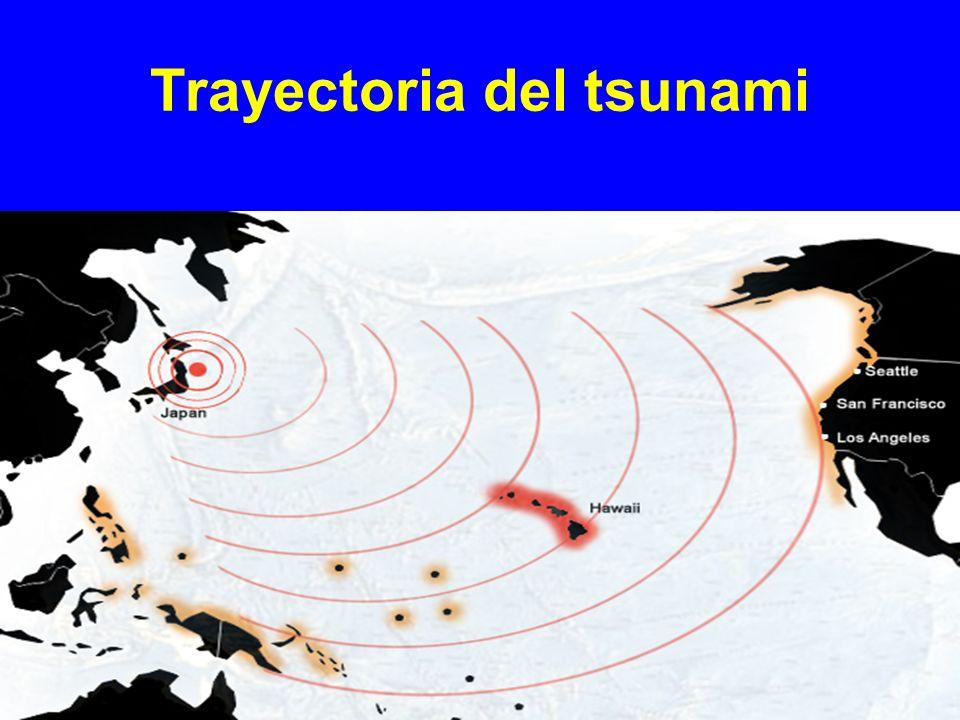 Trayectoria del tsunami