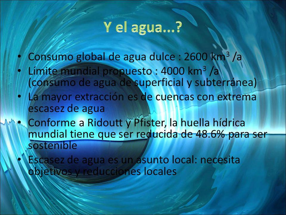 Consumo global de agua dulce : 2600 km 3 /a Límite mundial propuesto : 4000 km 3 /a (consumo de agua de superficial y subterránea) La mayor extracción